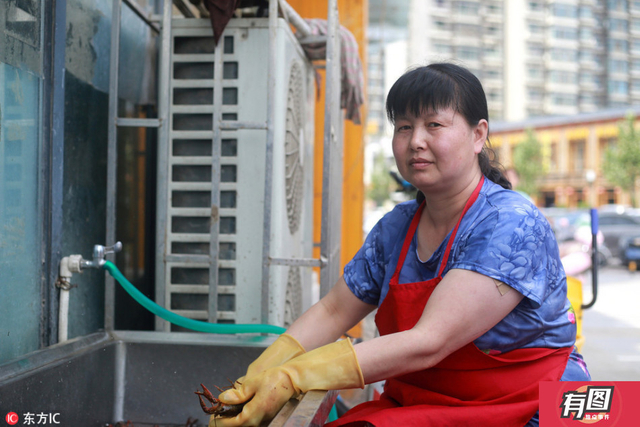 郑州洗虾人一天洗200斤